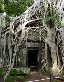 A doorway at Ta Prohm temple